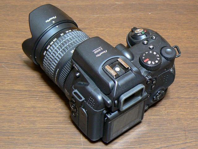 P1050116-1600.jpg