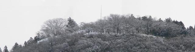 P1070124-5406-2.jpg